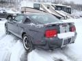 2007 Alloy Metallic Ford Mustang GT Deluxe Coupe  photo #4