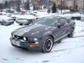 2007 Alloy Metallic Ford Mustang GT Deluxe Coupe  photo #6