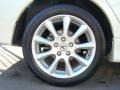 2008 Premium White Pearl Acura TSX Sedan  photo #6
