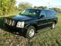 Black Raven 2006 Cadillac Escalade ESV AWD