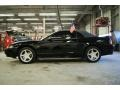 2001 Black Ford Mustang GT Convertible  photo #11