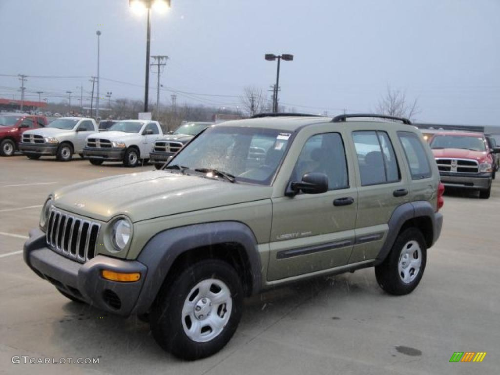2003 cactus green pearl jeep liberty sport 4x4 #25415191