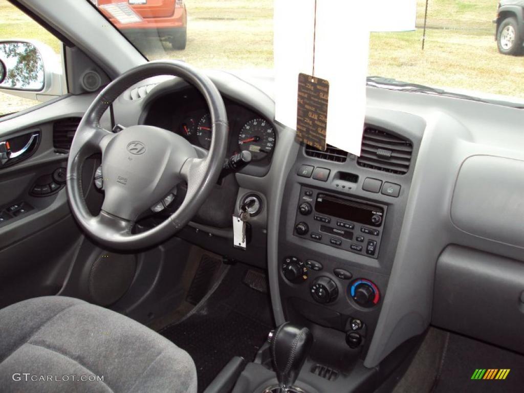2004 Pewter Hyundai Santa Fe Gls 25792955 Photo 12