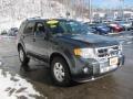 2009 Black Pearl Slate Metallic Ford Escape Limited V6 4WD  photo #4