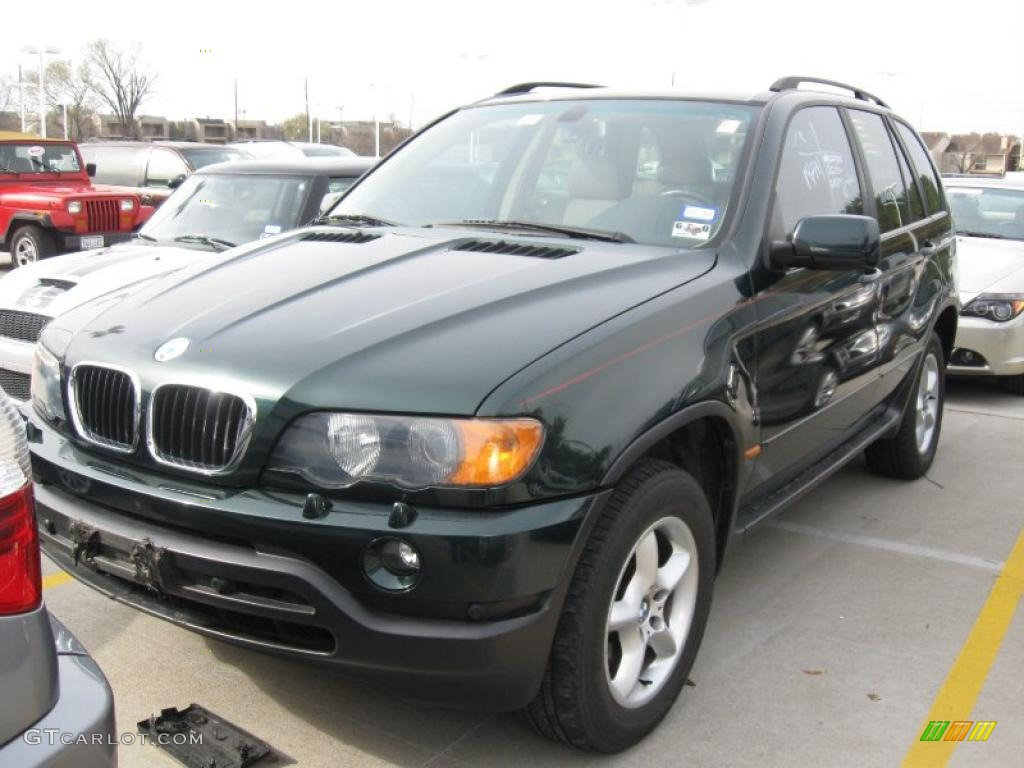 2003 oxford green metallic bmw x5 25841796 car color galleries. Black Bedroom Furniture Sets. Home Design Ideas