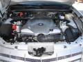 Light Platinum - SRX V8 Photo No. 18