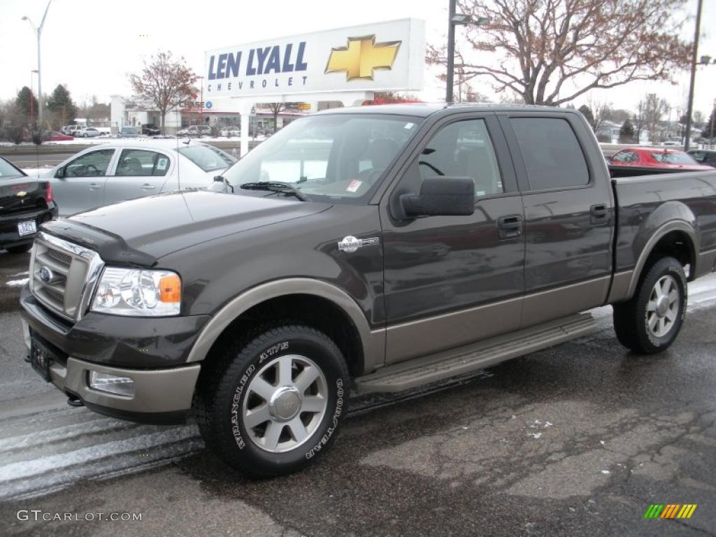 2005 Dark Stone Metallic Ford F150 King Ranch Supercrew 4x4 26125433 Car Color