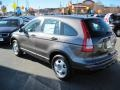 2010 Polished Metal Metallic Honda CR-V LX  photo #4