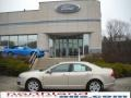 2010 Smokestone Metallic Ford Fusion SE  photo #1