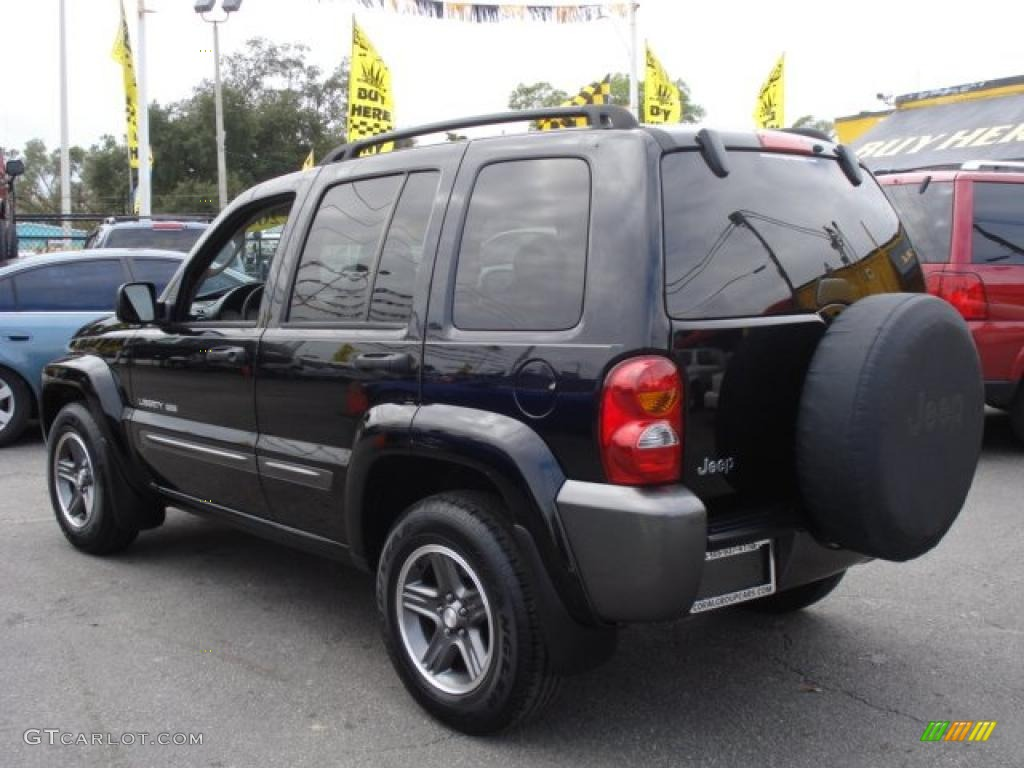 2004 black clearcoat jeep liberty sport columbia edition 27170027 photo 4 car. Black Bedroom Furniture Sets. Home Design Ideas