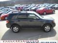 2009 Black Pearl Slate Metallic Ford Escape XLT V6 4WD  photo #5
