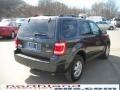 2009 Black Pearl Slate Metallic Ford Escape XLT V6 4WD  photo #6