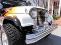Black/Flames - CJ CJ8 Scrambler 4x4 Photo No. 16