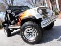 Black/Flames - CJ CJ8 Scrambler 4x4 Photo No. 27