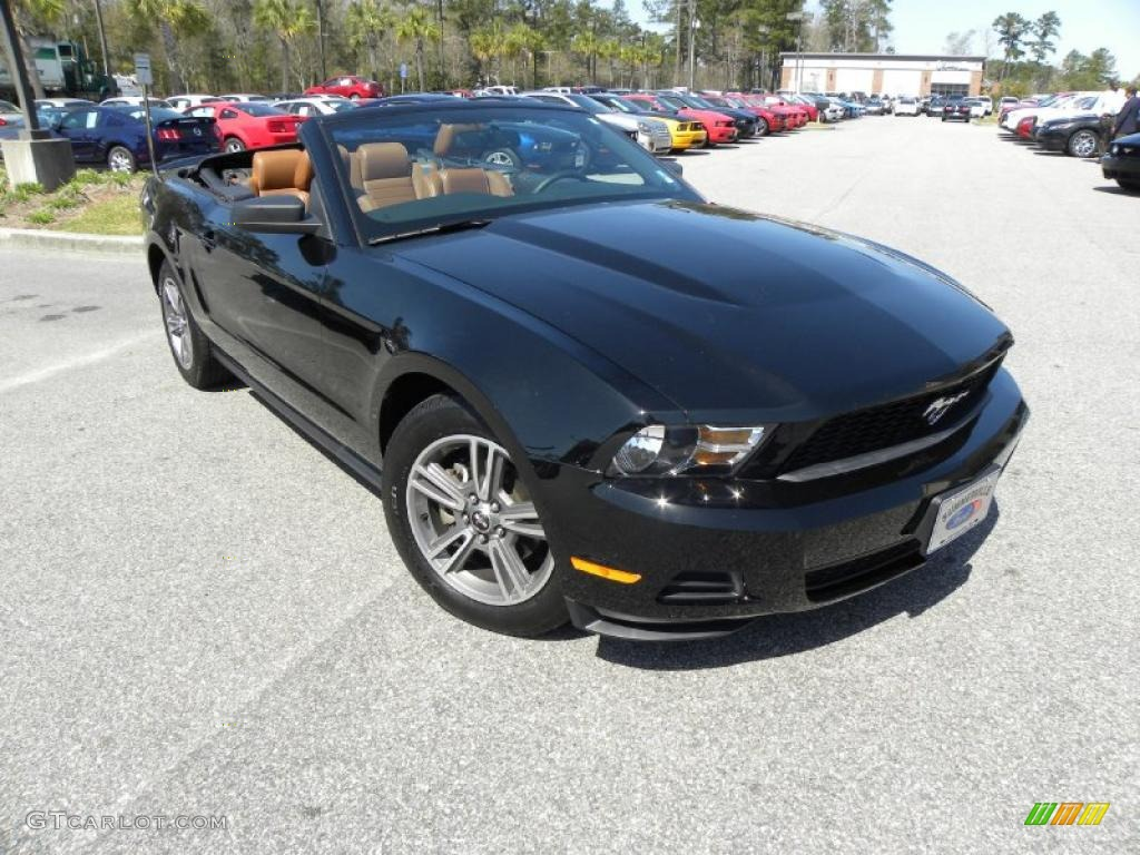 2010 black ford mustang v6 premium convertible 27544467 car color galleries. Black Bedroom Furniture Sets. Home Design Ideas