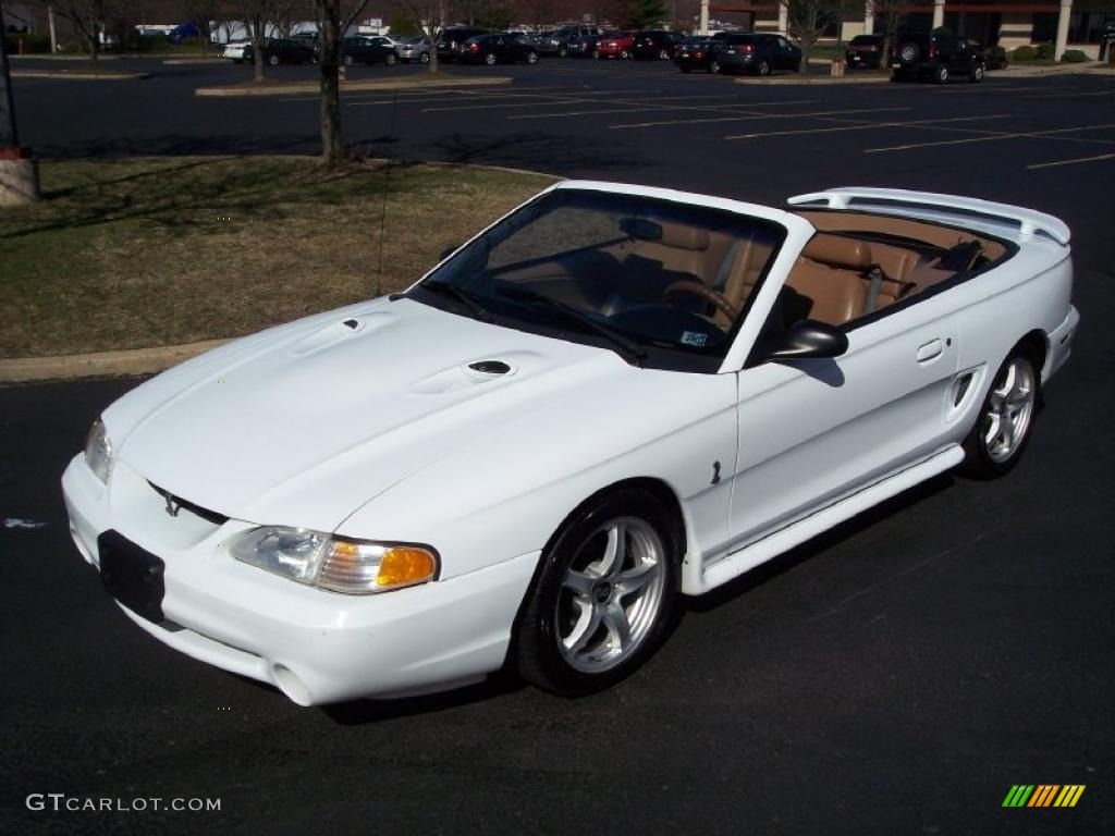 1998 Mustang Svt Cobra Convertible Ultra White Saddle Photo 23