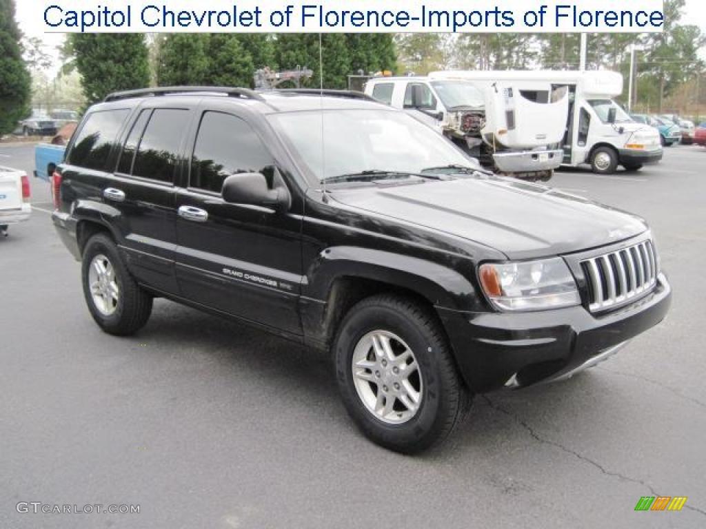 2004 brillant black crystal pearl jeep grand cherokee. Black Bedroom Furniture Sets. Home Design Ideas