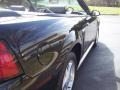 2001 Black Ford Mustang V6 Convertible  photo #32