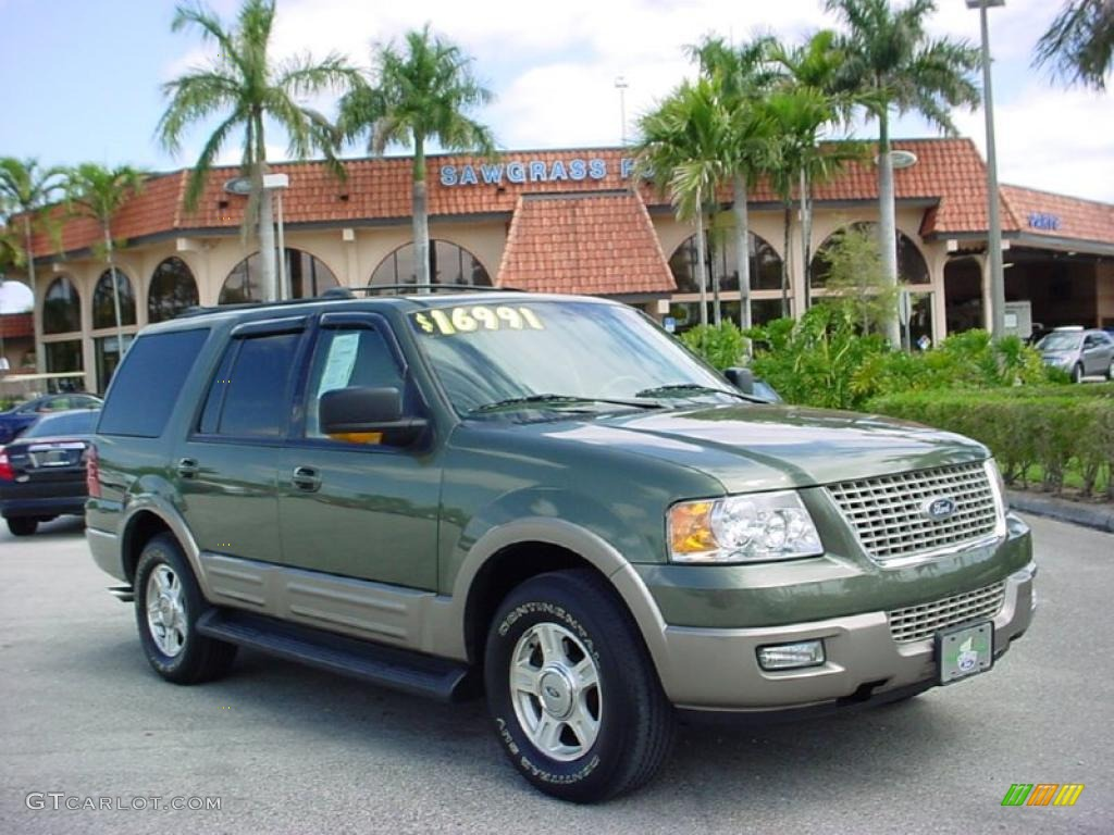 2003 estate green metallic ford expedition eddie bauer. Black Bedroom Furniture Sets. Home Design Ideas