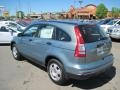 2010 Opal Sage Metallic Honda CR-V LX  photo #3