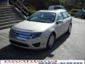 2010 Smokestone Metallic Ford Fusion SEL V6  photo #2