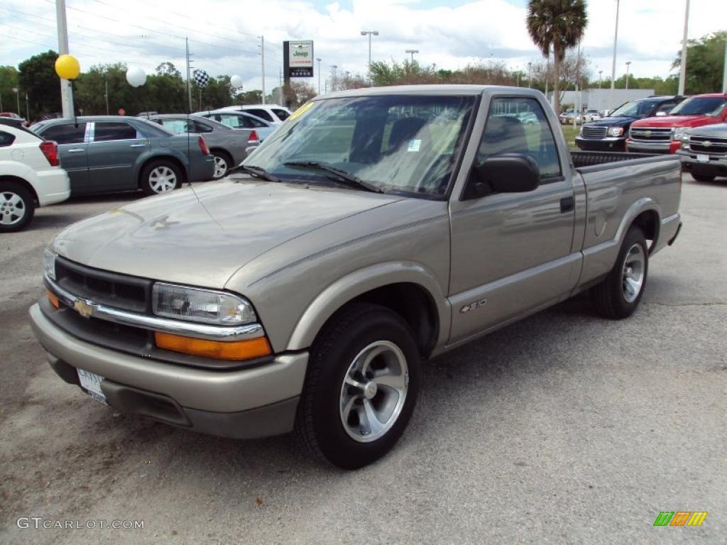 Light pewter metallic chevrolet s10