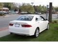 2008 Premium White Pearl Acura TSX Sedan  photo #4