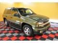 Medium Sage Green Metallic 2002 Chevrolet TrailBlazer Gallery