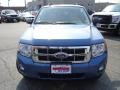 2009 Sport Blue Metallic Ford Escape XLT V6 4WD  photo #9