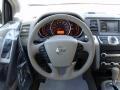 2010 Tinted Bronze Metallic Nissan Murano SL  photo #12