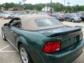 2001 Tropic Green metallic Ford Mustang V6 Convertible  photo #24