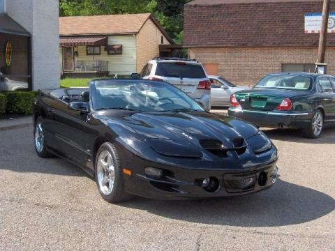 1998 pontiac firebird trans am convertible data info and. Black Bedroom Furniture Sets. Home Design Ideas