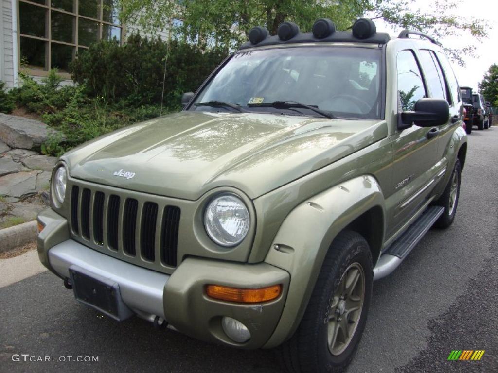 2002 cactus green metallic jeep liberty renegade 4x4 29669273 car color galleries. Black Bedroom Furniture Sets. Home Design Ideas