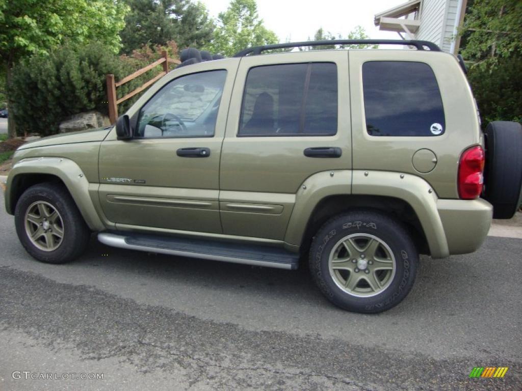 2002 cactus green metallic jeep liberty renegade 4x4 29669273 photo 2 car. Black Bedroom Furniture Sets. Home Design Ideas