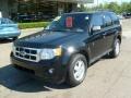2009 Black Pearl Slate Metallic Ford Escape XLT V6 4WD  photo #8