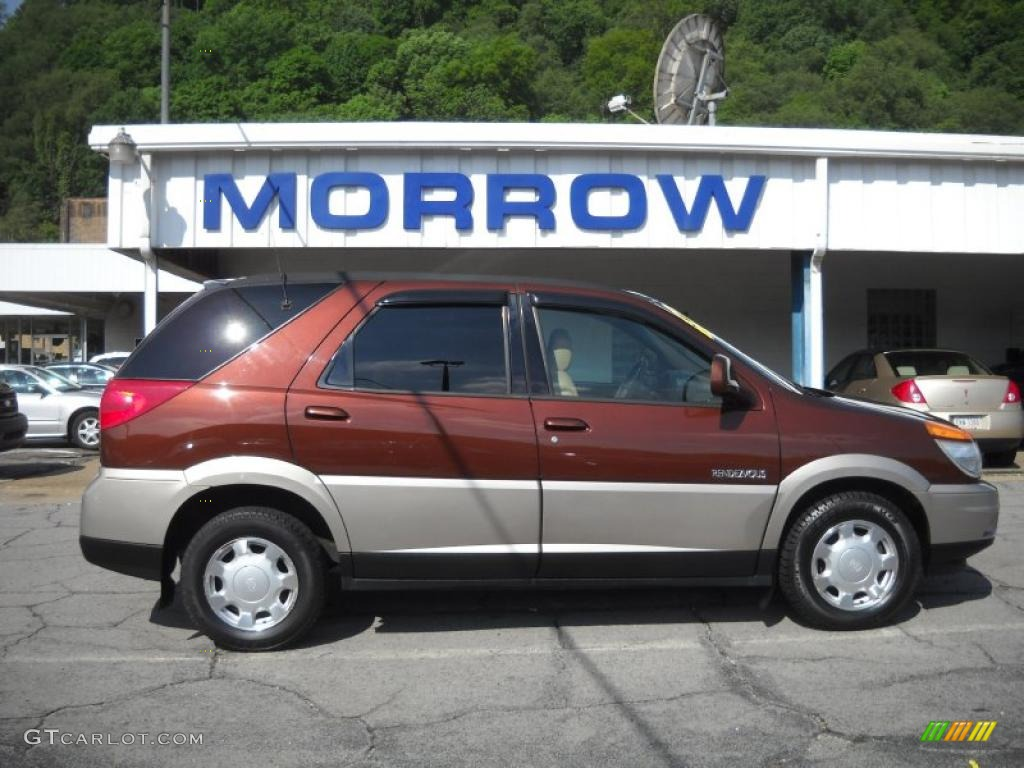 2002 sedona bronze buick rendezvous cxl awd 30432082. Black Bedroom Furniture Sets. Home Design Ideas