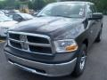 Brilliant Black Crystal Pearl 2010 Dodge Ram 1500 Gallery