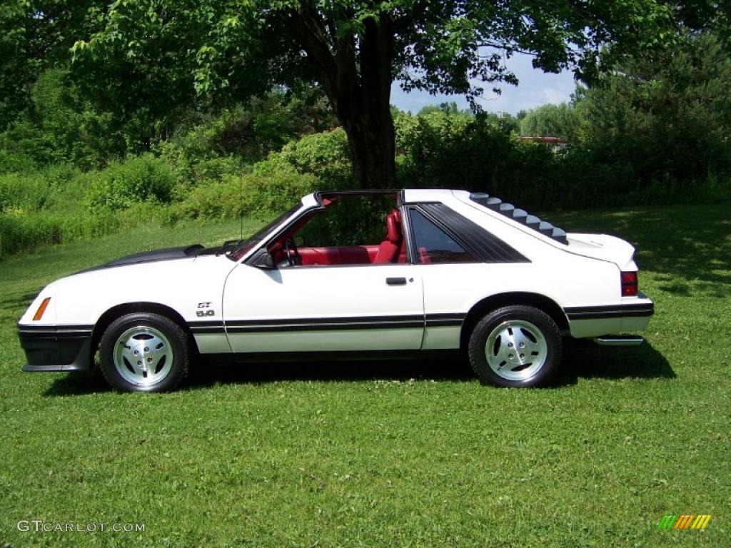 1983 white ford mustang gt coupe 31073587 photo 8 gtcarlot com