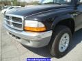 2004 Black Dodge Dakota SLT Club Cab 4x4  photo #9