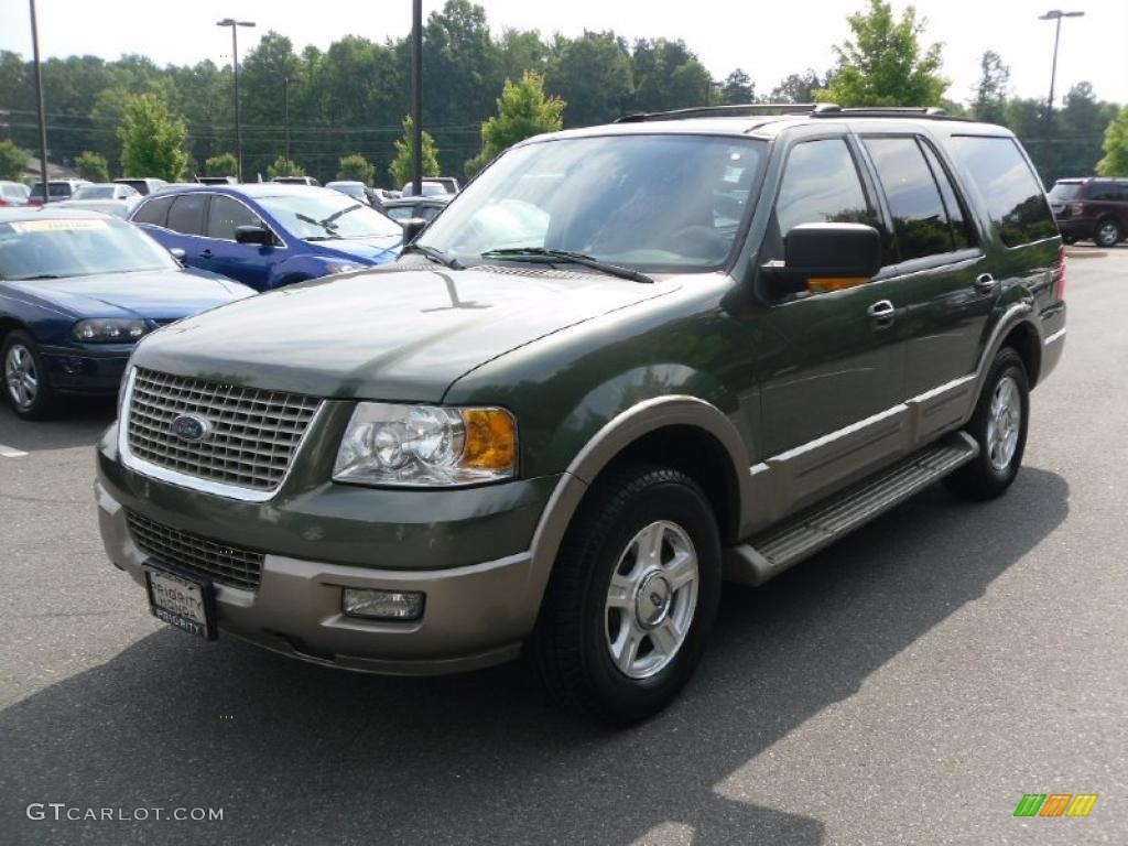 2004 Estate Green Metallic Ford Expedition Eddie Bauer 31204626 Car Color