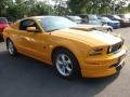 2007 Grabber Orange Ford Mustang V6 Deluxe Coupe  photo #7