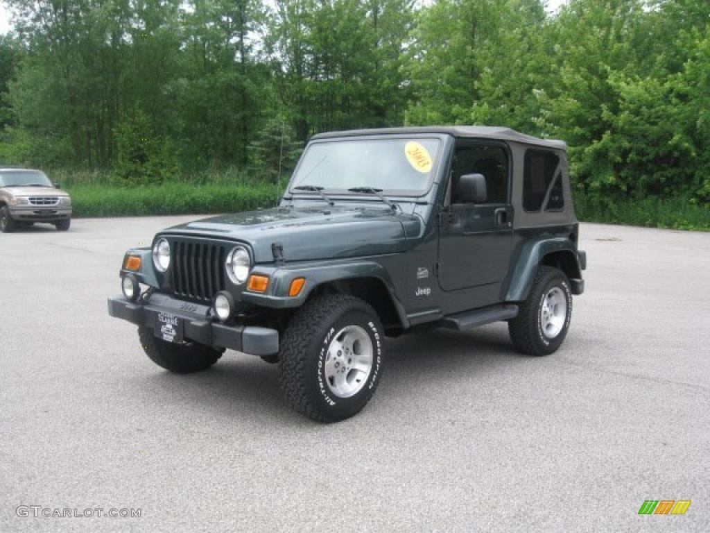 2003 shale green metallic jeep wrangler sahara 4x4. Black Bedroom Furniture Sets. Home Design Ideas