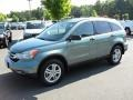 2010 Opal Sage Metallic Honda CR-V EX  photo #1