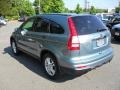2010 Opal Sage Metallic Honda CR-V EX  photo #2