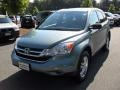 2010 Opal Sage Metallic Honda CR-V EX  photo #5