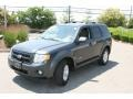 2009 Black Pearl Slate Metallic Ford Escape Hybrid 4WD  photo #1