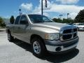 2002 Light Almond Pearl Dodge Ram 1500 ST Quad Cab  photo #7