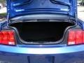 2007 Vista Blue Metallic Ford Mustang GT Premium Coupe  photo #26
