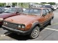 Rustic Bronze 1983 AMC Eagle Series 30 Wagon