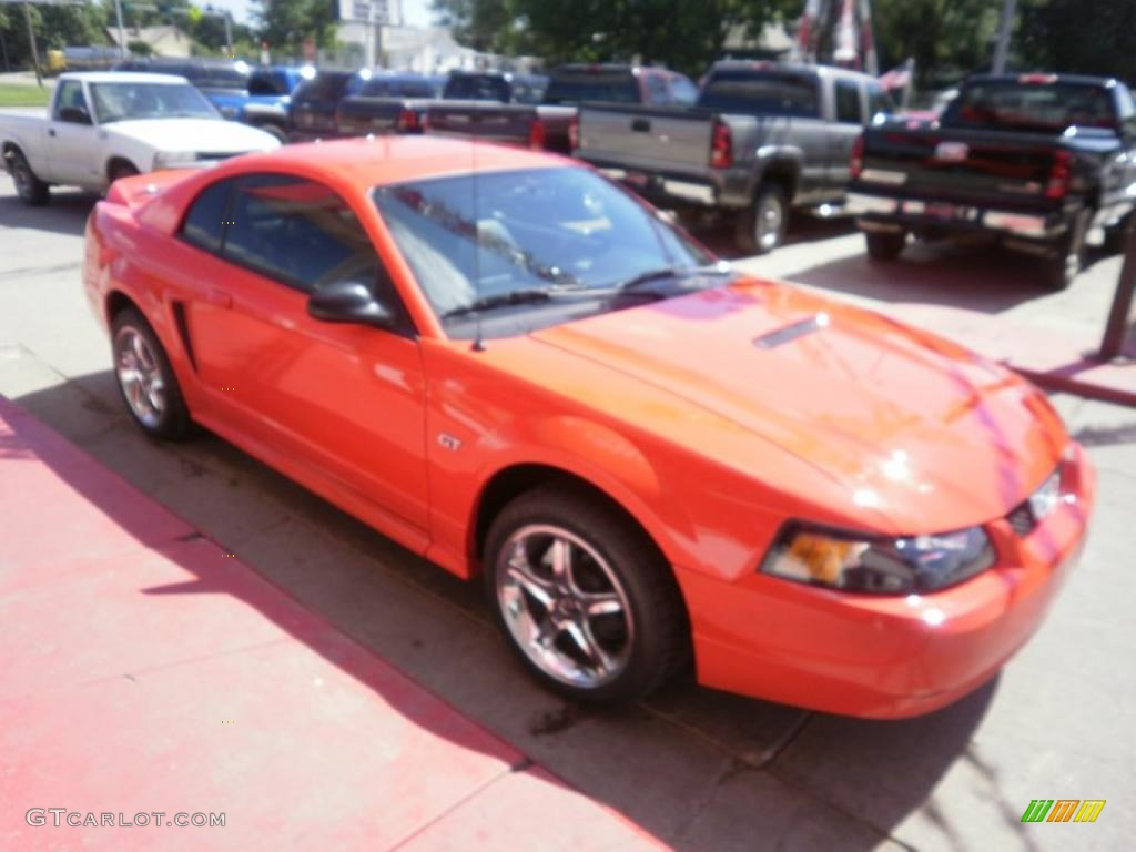 2000 Mustang GT Coupe - Performance Red / Dark Charcoal photo #3